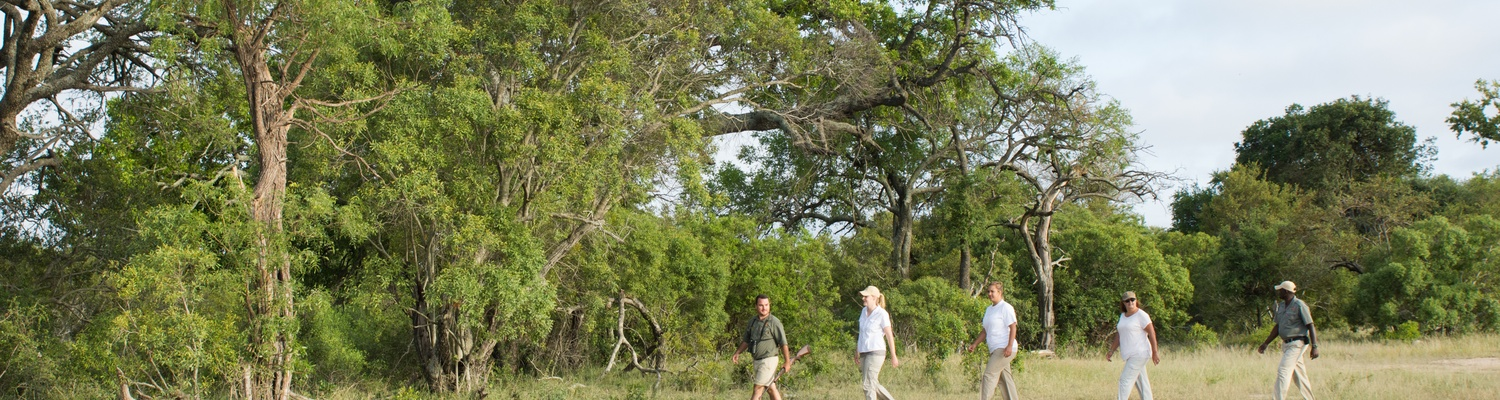 Shumbalala Bush Walks